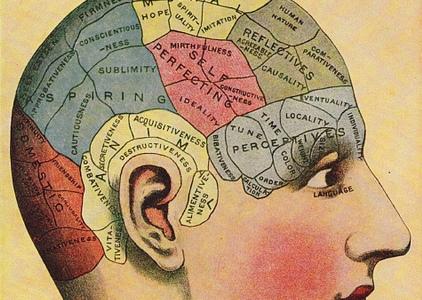 diagram of brain regions