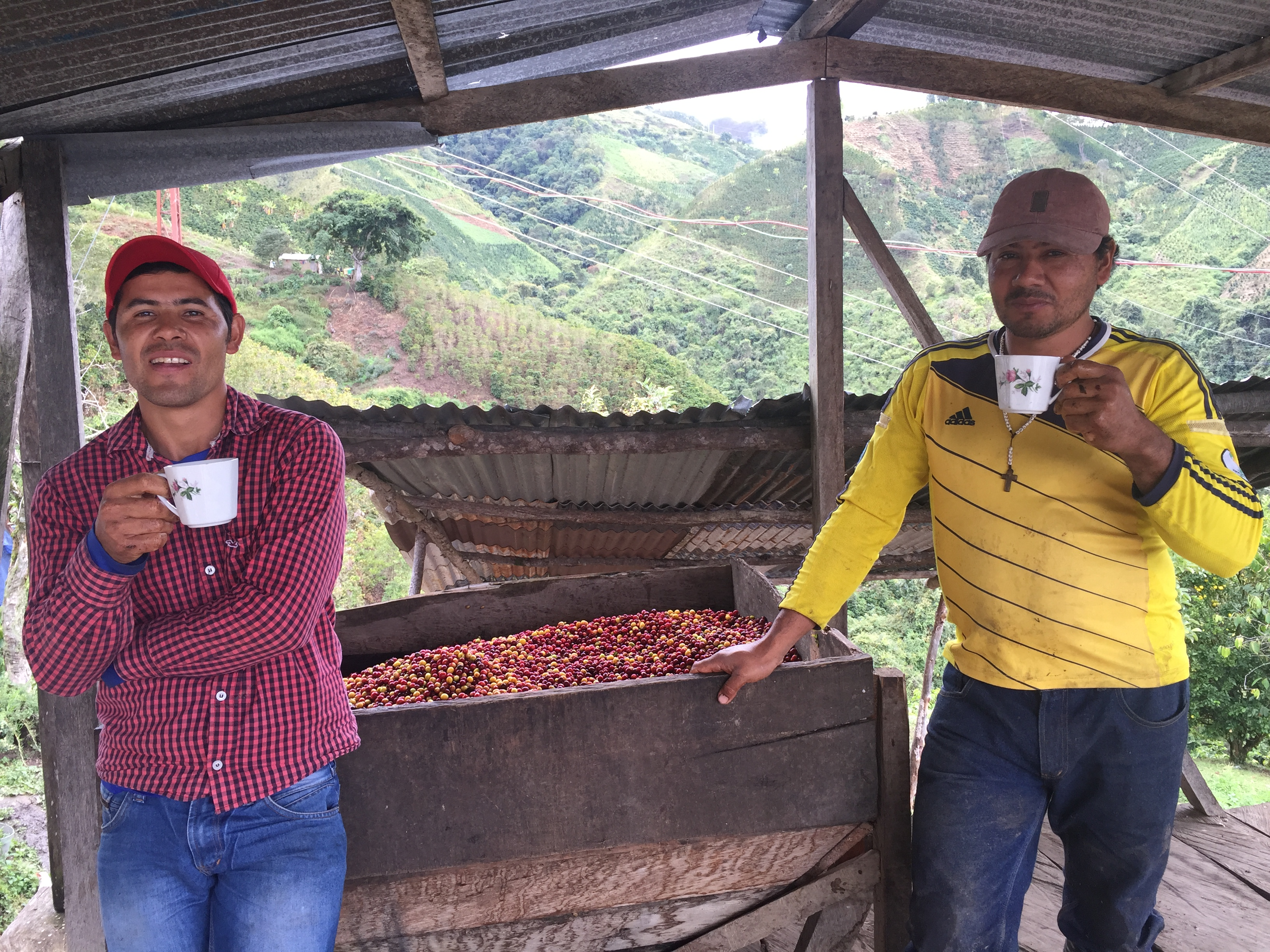 two people holding cups standing under wood hut in front of mountains in Colombia