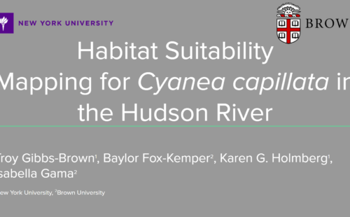 """Cover of research presentation, """"Habitat Suitability Mapping for C. capillata in the Hudson River"""""""